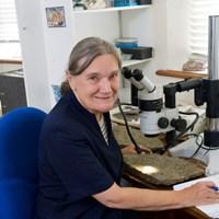 Professor Dianne Edwards CBE FRS