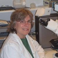 Professor Margaret Robinson FMedSci FRS