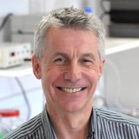 Professor Steve Brown FMedSci FRS